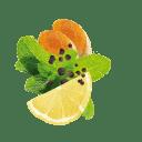 Zitronenschale, Minze, Pfeffer und Curcuma