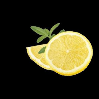 aufgeschnittene Zitrone
