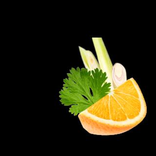 Orangenstück mit Koriander und Lemongras