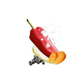 Pfefferwuerzung mit Salz, Karotte, Paprika, Zwiebelscheiben und Pfeffer
