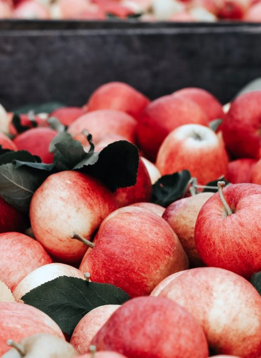 Kiste gefüllt mit Äpfeln