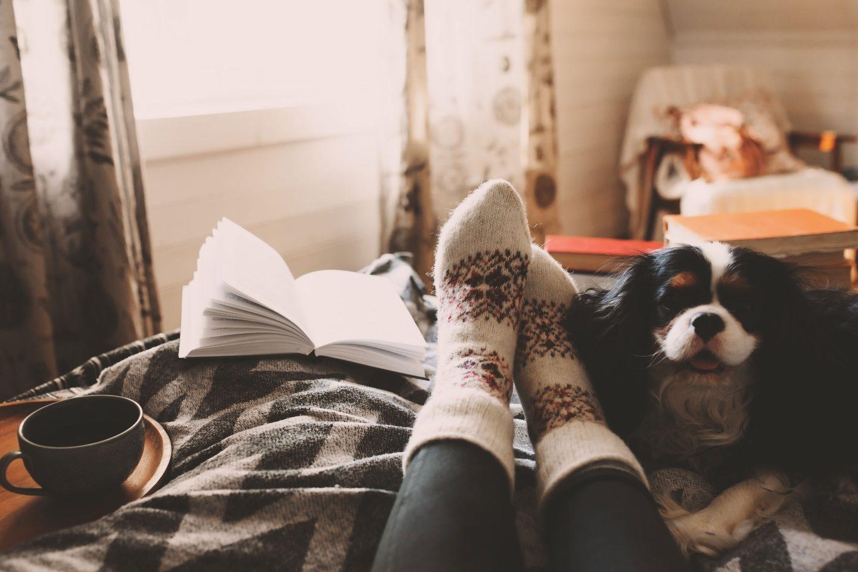 eine Person liegt in einem Bett mit aufgeschlagenem Buch, Hund und einer Tasse Tee
