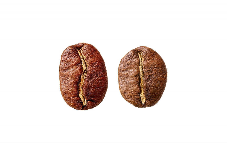 Kaffe Robusta Arabica