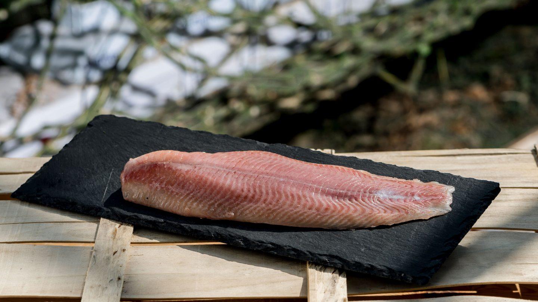 Ein saftiges Stück Welsfilet auf einer rechteckigen Schieferplatte liegt auf einer umgedrehten Holzkiste für Gemüse; im Hintergrund ist Gestrüpp und Wasser zu sehen