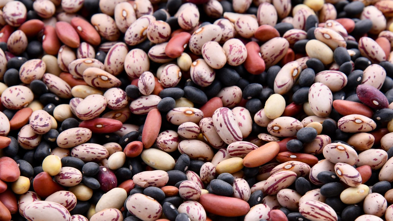 viele verschiedene Bohnensorten von oben s